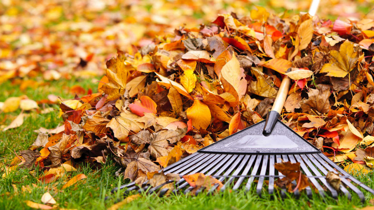 Hrable, lopaty, vidly a sekery - v záhrade vyberáme potrebné vybavenie